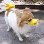 Kutya Kacsa Pofa szájkosár (S-es)